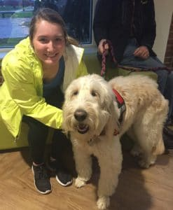 Clarissa Uttley, PhD, is an associate professor and head of the Pet Assisted Therapy program at Plymouth State University